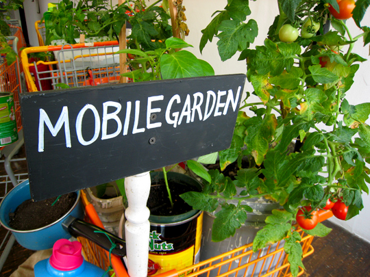 tattfoo-tan-black-mobile-gardens-3