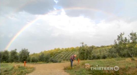 avec-eric-rainbow