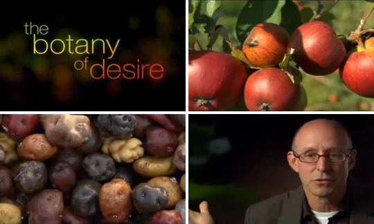 Here's a preview of the upcoming PBS special The Botany of Desire based on