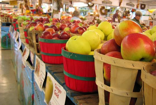 new-york-state-apples