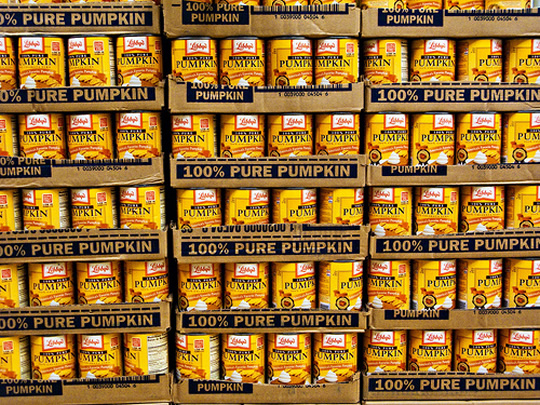 wall-of-pumpkin
